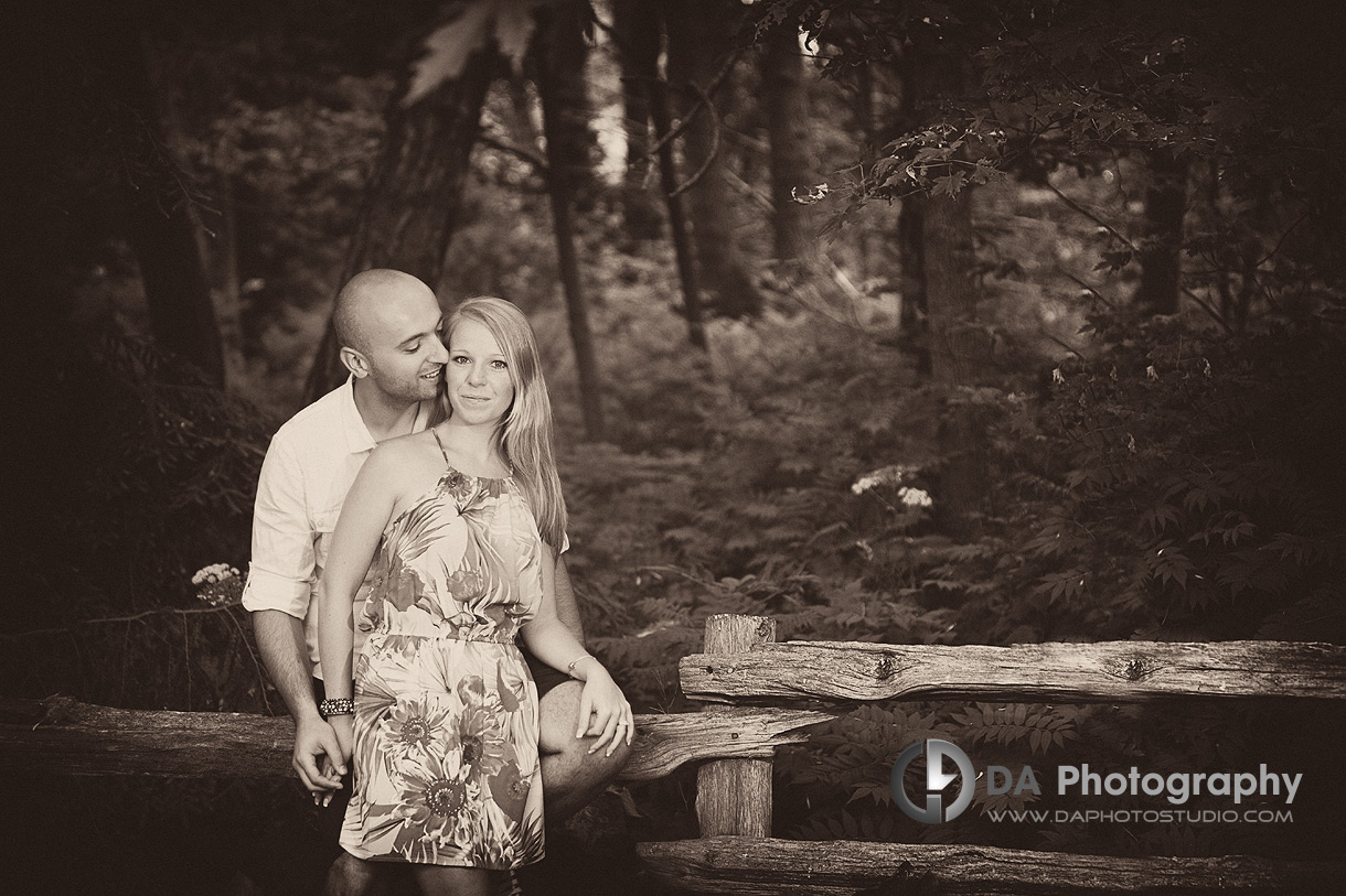 In the forest - Engagement photographer