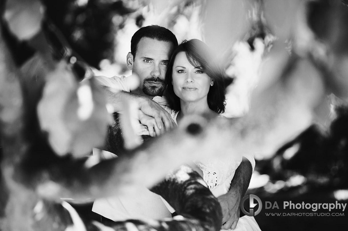 Couple portrait through the leaves - at Gairloch Gardens, Oakville by DA Photography , www.daphotostudio.com