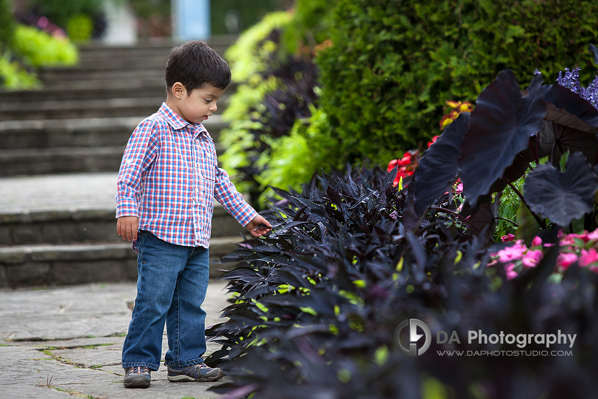 Spring Family Photo Locations in Oakville