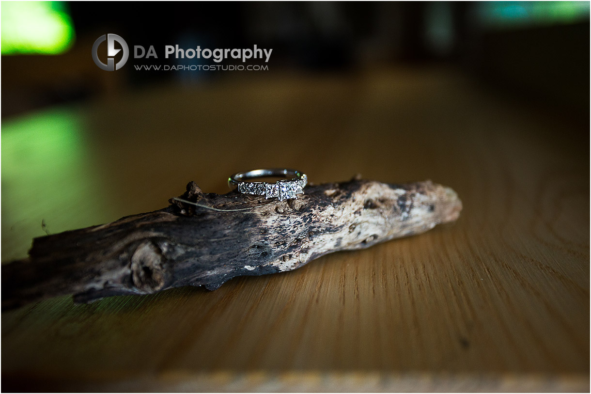 Photos of Engagement Ring at Long Point Eco-Adventures