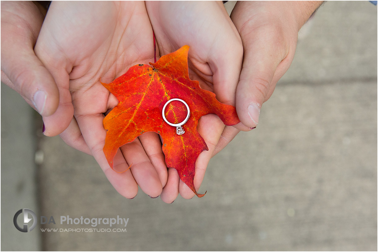 Engagement Ring in Fall